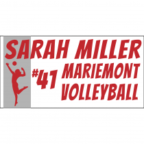Volleyball Personalized